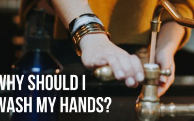 Why Should I Wash My Hands?